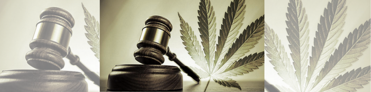 Legalizzazione droghe, perchè sì