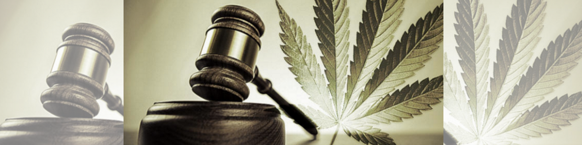Legalizzazione, ecco cosa eccepisco a Giacalone e a Ocone